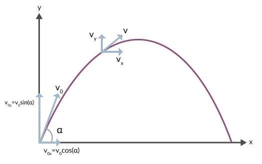 Dela upp hastigheten i en horisontell riktning och en vertikal riktning.